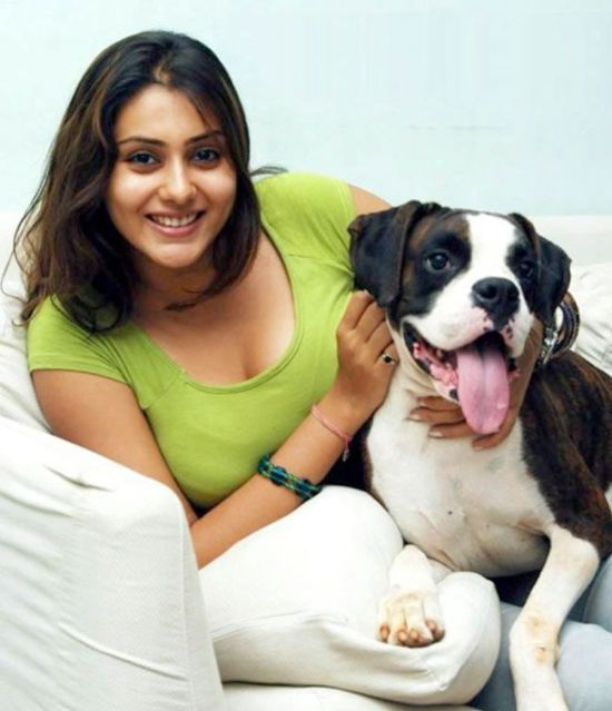 Namitha New Hot Stills
